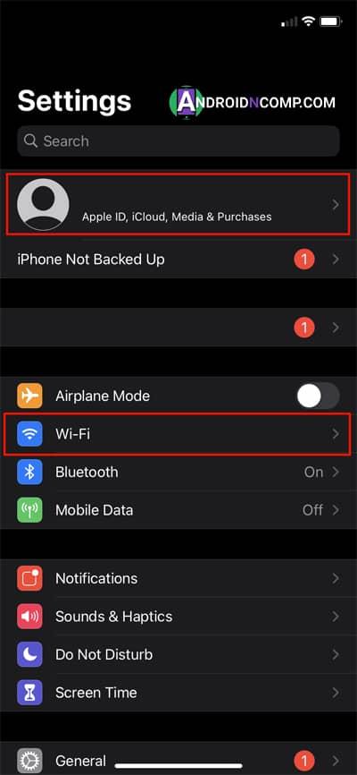 basic iPhone settings